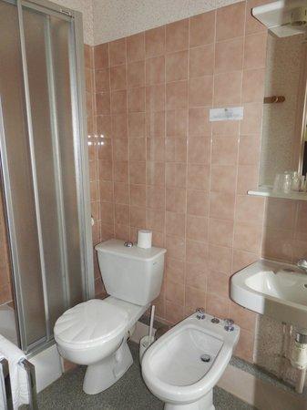 Le Chatel Hotel-Restaurant : Salle de douche