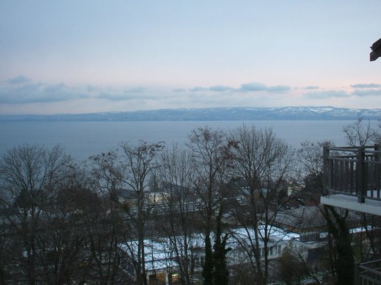 Zenitude Hôtel-Résidences Les Terrasses du Lac: VISTA DEL LAGO LEMAN DESDE LA TERRAZA