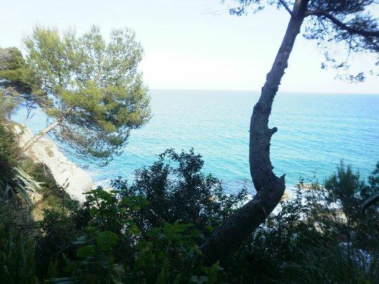 Hotel Cap Roig : Vue de la chambre!