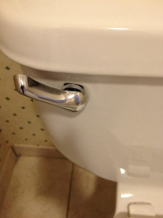 Embassy Suites by Hilton Niagara Falls Fallsview Hotel : Toilet handle very loose