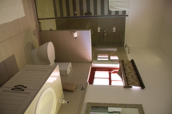 Montagu Vines Guesthouse : Gorgeous Bathroom - Enormous Shower
