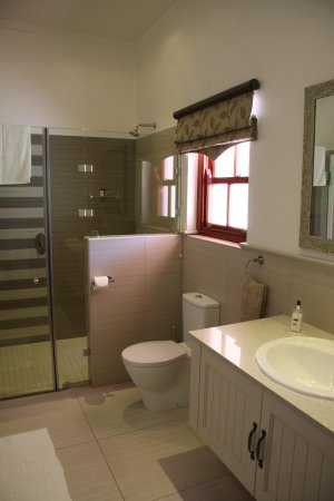Montagu Vines Guesthouse : Gorgeous Bathroom - Enormous Shower