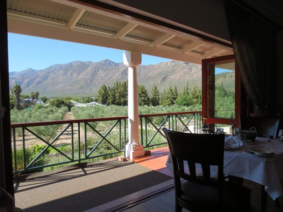 Montagu Vines Guesthouse: What A View from the Breakfast Room!