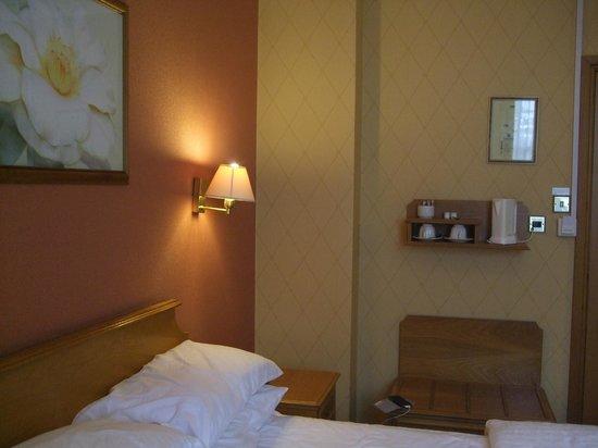 ฮอว์คสโตน พาร์ค: Hotel room