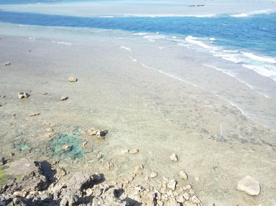 Higashi Hennazaki Lighthouse : 池のように見えるところには魚が取り残されています