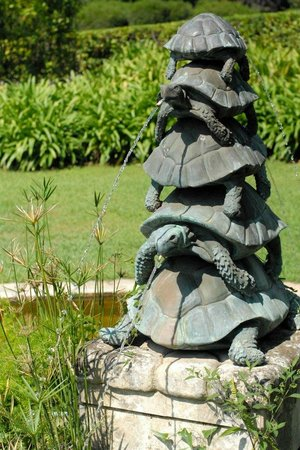 Hotel du Cap Eden-Roc : Turtles on the grounds