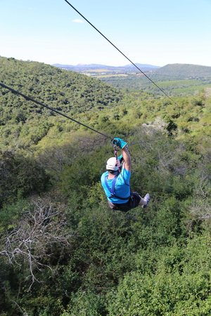 Skyway Trails: Zipping