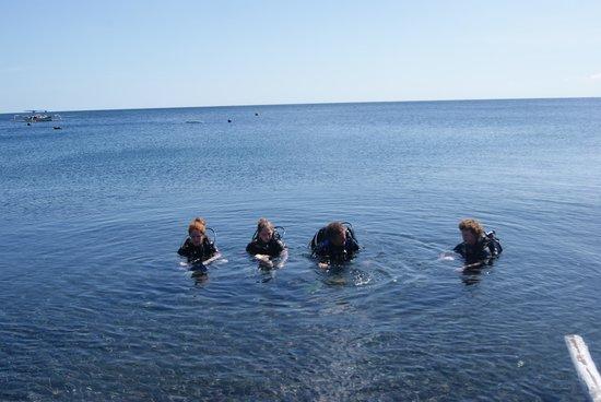 Adventure Divers Bali: Première plongée