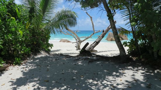 Raffles Seychelles: Beach in walking distance