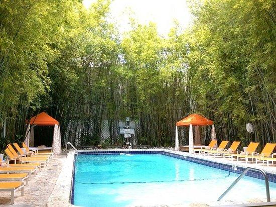 Catalina Hotel & Beach Club : Maxine pool