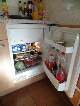 Ferienresort Cochem: Te kleine koelkast voor 8 personen