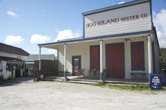 Hog Island Oyster Company: building