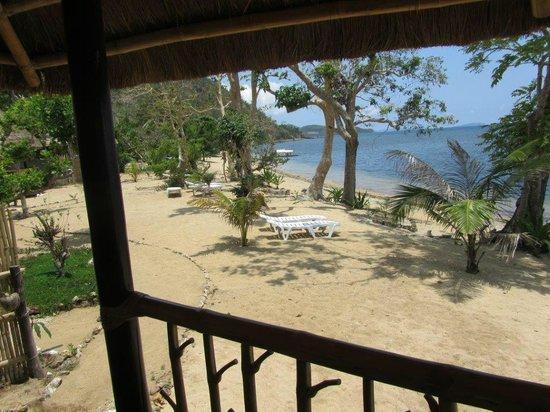 Cashew Grove Beach Resort : Vue depuis la chambre 1