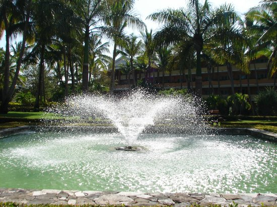 Iberostar Dominicana Hotel : Belos jardins