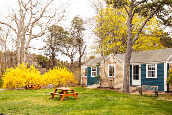 Cove Bluffs Inn: Enjoy