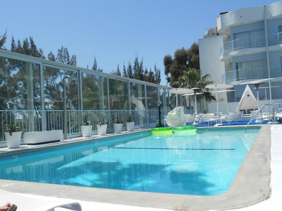 The Standard, Hollywood: pool
