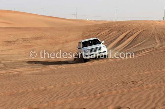 The Desert Safari - Day Tours