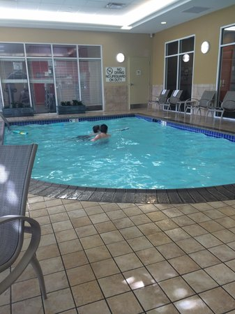 Hilton Garden Inn Louisville Northeast: Small pool