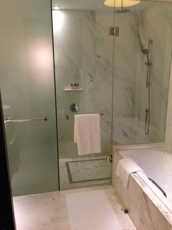 Park Hyatt Siem Reap: Shower