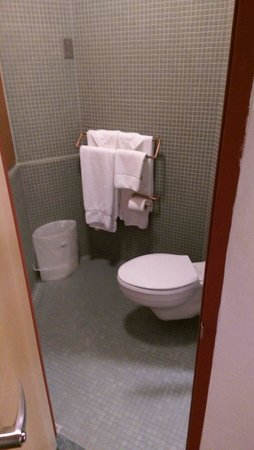 Inn at Price Tower: Restroom