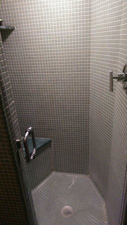 Inn at Price Tower: Shower