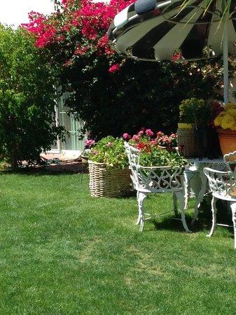 Amin Casa: Gardens