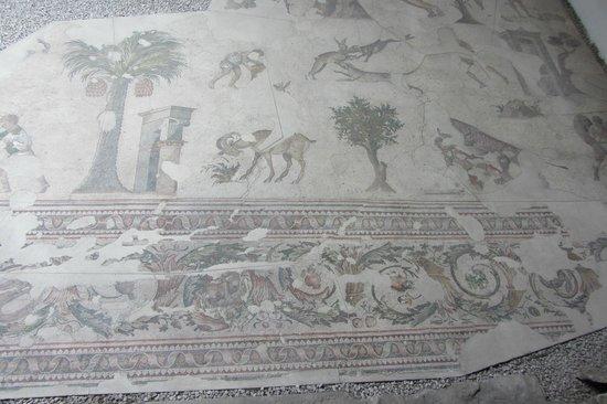Mosaic Museum: Мозаики