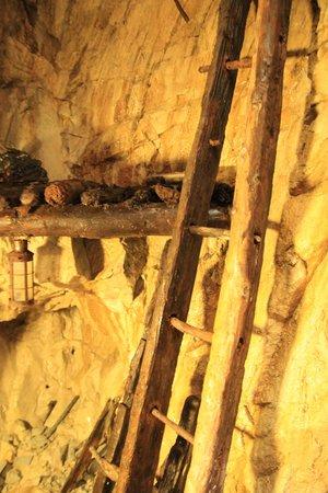 Glengowla Mines : Ladder