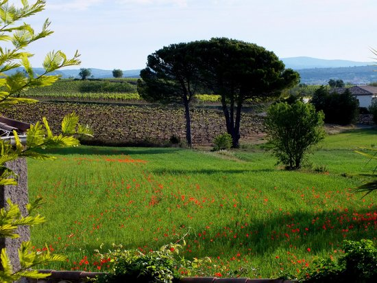 Le Saint Andre : View from the terrace at breakfast