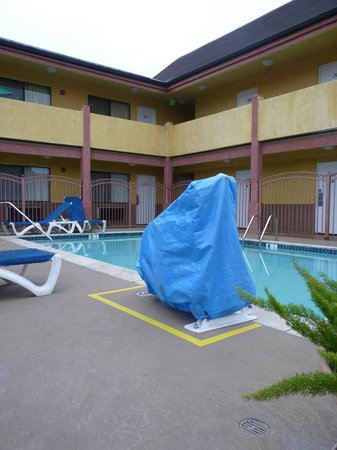Hollywood Inn Express South : La piscine
