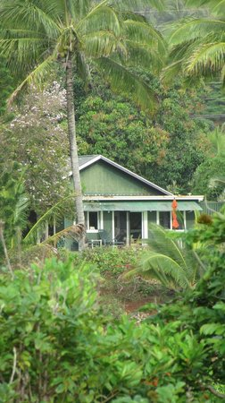 Mahinani's Farm: Cottage from the driveway