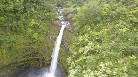 Skyline Eco Adventures - Akaka Falls: A shot of the waterfall  from the 7th zipline.