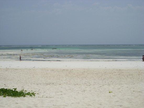 Dongwe Club: la spiaggia
