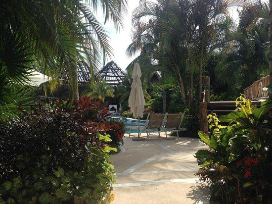 The Grand Mayan Riviera Maya: Pool area