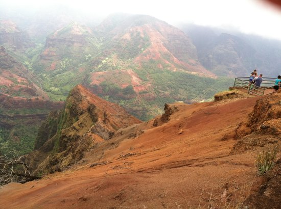 Waimea Canyon : The most amazing views you will ever see!