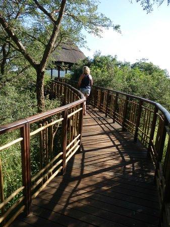 Thanda Safari : Tented camp area.
