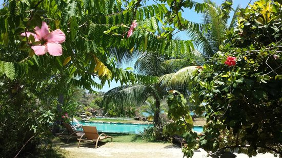 Fishermen's Cove : piscina