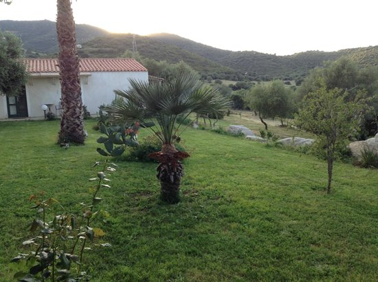 Locanda Murales : giardino