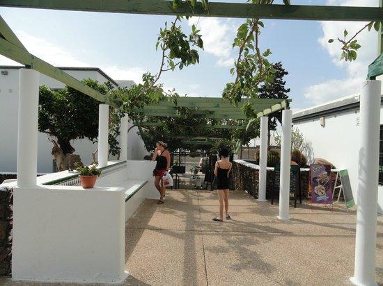 Apartamentos Guacimeta Lanzarote: In the grounds