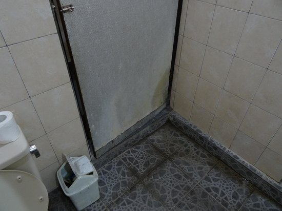 Kunang-Kunang Guesthouse: Drzwi w łazience.