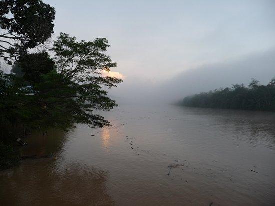 Barefoot Sukau Lodge: Kinabantang