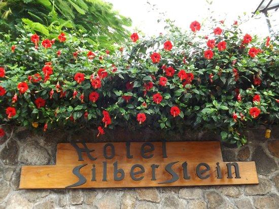 Hotel Silberstein: Flores del ingreso