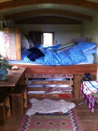 Wild Northumbrian Tipis and Yurts: Inside the Shepher'd Hut