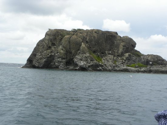 Pirate Tours : Primo Snorkeling Spots