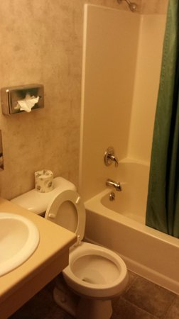 Crest Motel: Picture of Bathroom