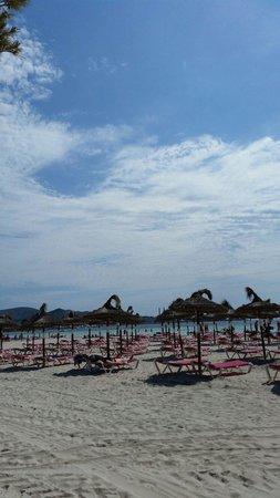 Club MAC Alcudia: Lovely beach only 15 mins walk away