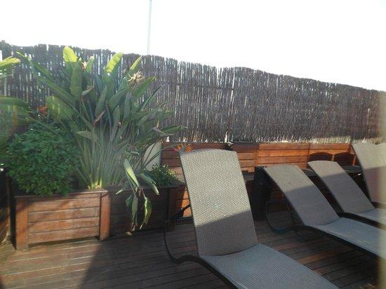 Catalonia Atenas Hotel : Sun loungers