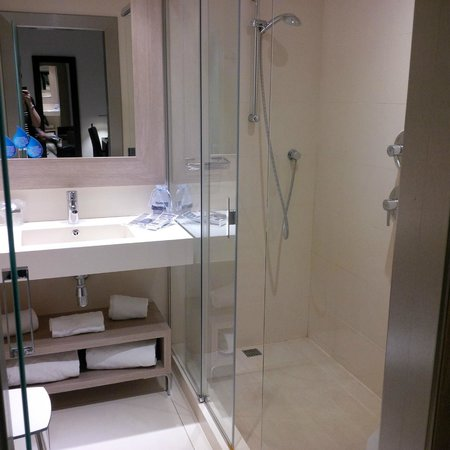 Catalonia Atenas Hotel : En-suite shower room: shower, sink & toilet