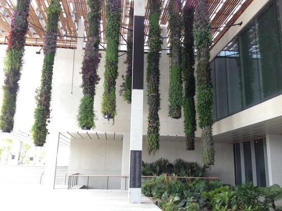 Perez Art Museum Miami: The Hanging Gardens
