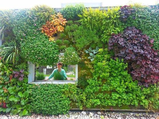 Lovely window picture of die garten tulln tulln for Garten pool tulln